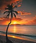 Caribbean Sunset Tortola BVI mural