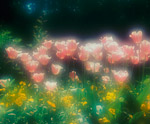 Monet Spring Giverny