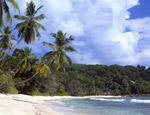 Gentle Surf On Anse Takamaka Seychelles mural