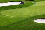 Golf Green mural