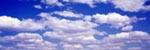 Day Dreamer Sky mural