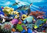 Reef Life mural