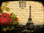 Paris Red Rose Eiffel Tower mural