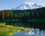Mt Rainier Mirrored in Reflection Lake