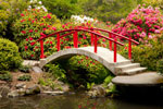 Footbridge and Flowers Kubota Garden
