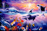 Tropical Treasures - Orcas