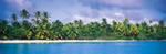 Tuamotu French Polynesia 1 mural