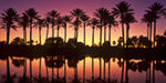 Palm Desert Sunset