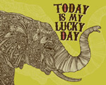 Lucky Day Elephant