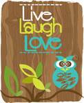 Live Laugh Love Owl
