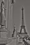 Eiffel Tower - Black and White