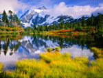Mount Shuksan  Picture Lake Washington mural