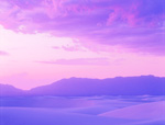 White Sands Lavender Evening mural